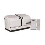 Champion 8.5kW Home Standby Generator with 50 Amp Nema 3R Automatic Transfer Switch | 100177